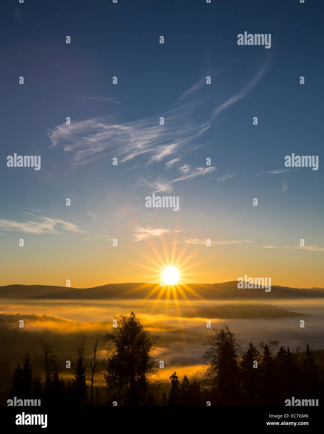 Germany, Bavaria, Bavarian Forest National Park, View from valley with waft of mist at sunrise - Stock Image