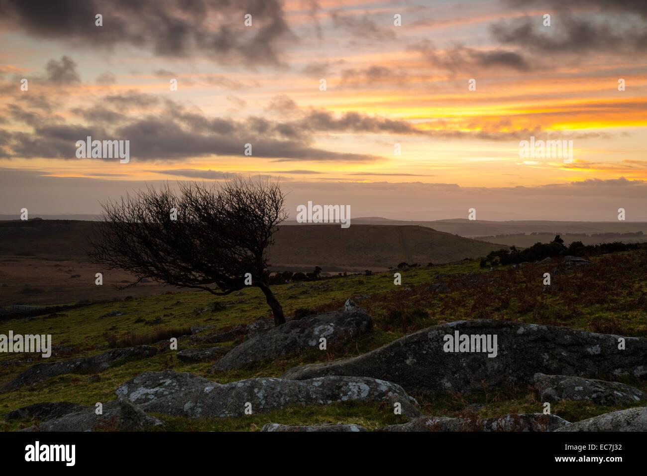 Sharptor Sundown - Stock Image