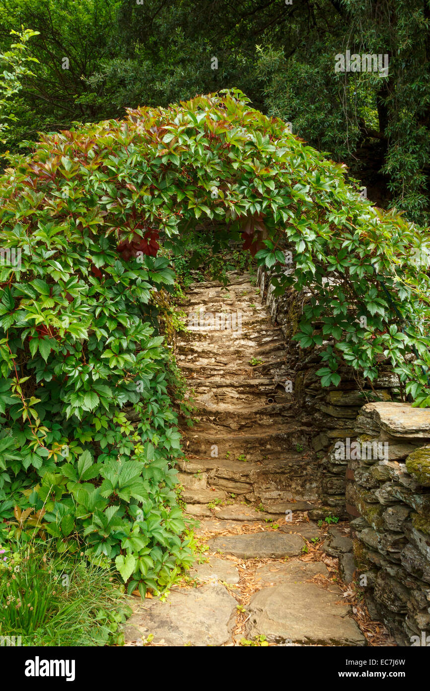 path foliage schist stones arch - Stock Image