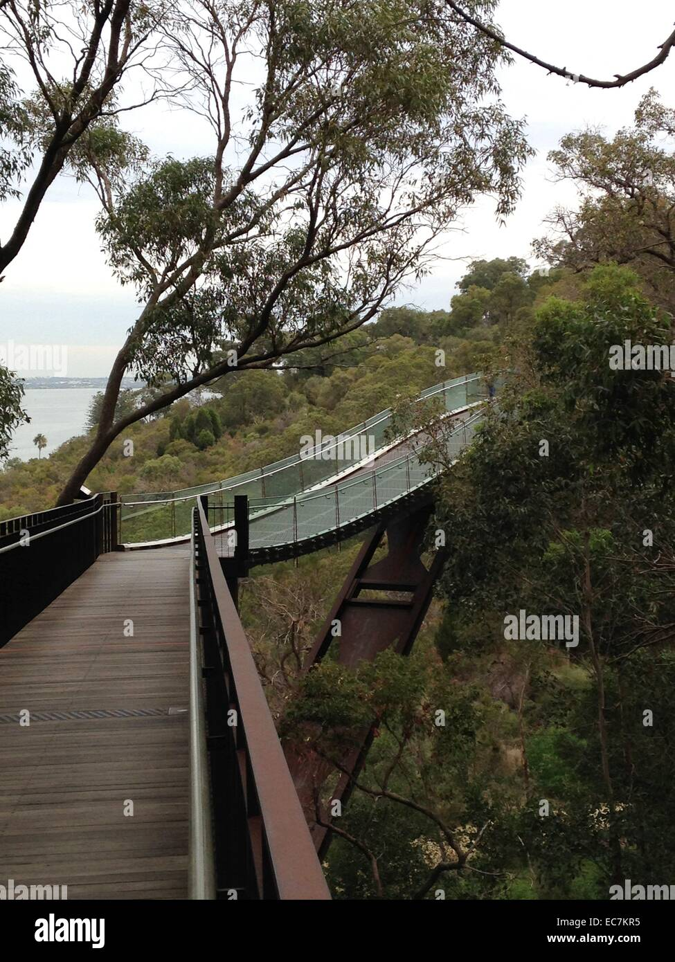 footbridge, in Kings Park, nature park, Perth, Western Australia - Stock Image