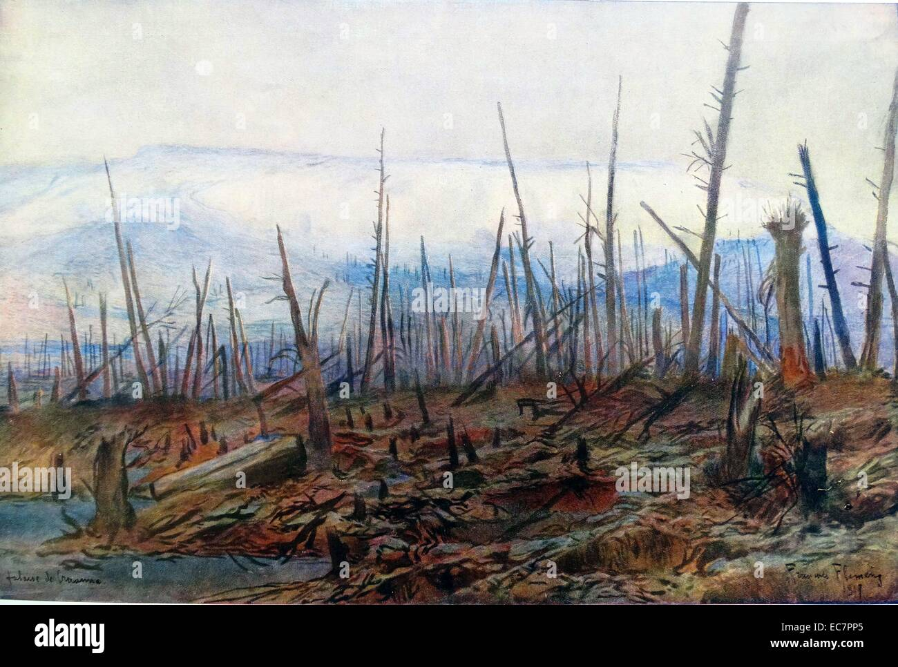forest at Craonne, france destroyed during battles raging in World War One - Stock Image