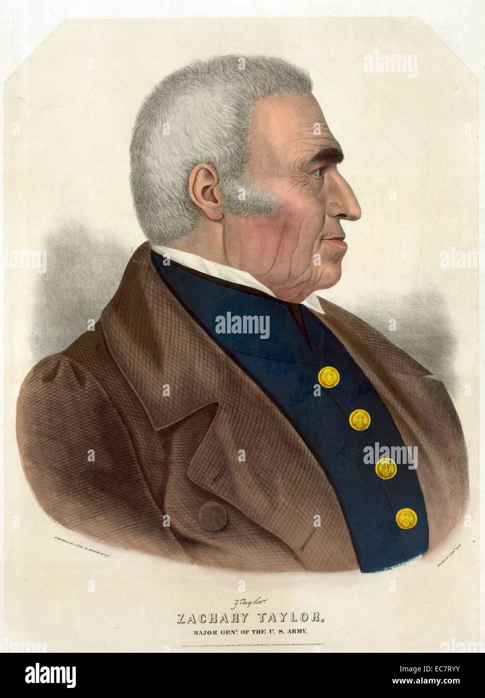 Zachary Taylor (November 24; 1784 – July 9; 1850) was the 12th President of the United States; serving from March Stock Photo