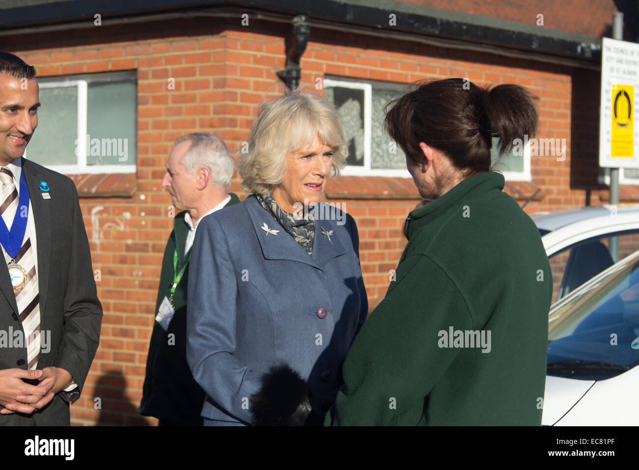St. Albans, Hertfordshire, UK. 10th Dec, 2014. Camilla, Duchess of Cornwall, undertakes a pre-christmas visit to - Stock Image
