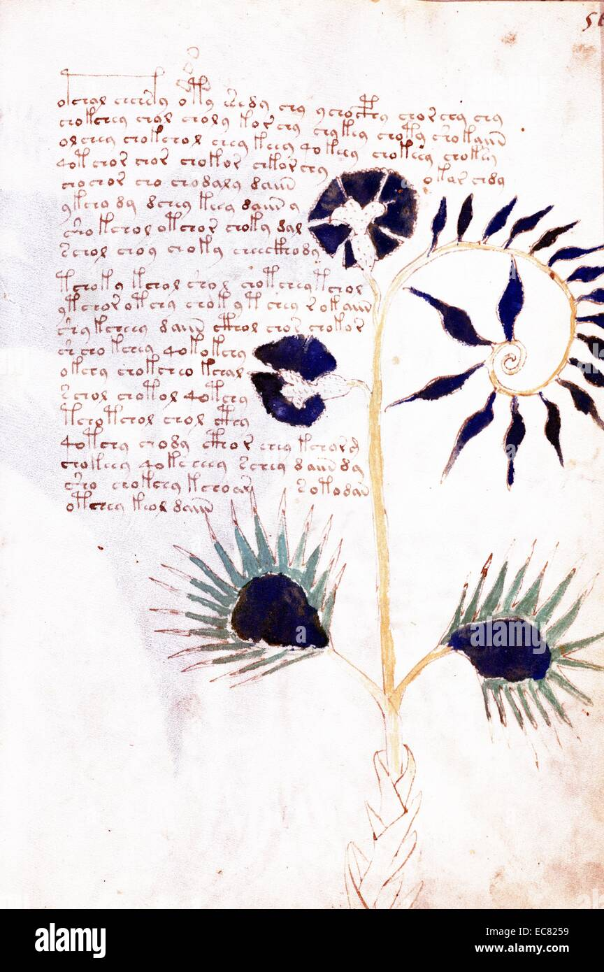 voynich dating i have no time for dating