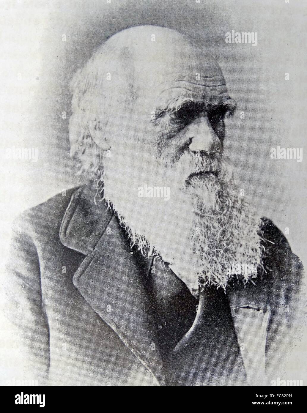 Photograph of Charles Darwin - Stock Image