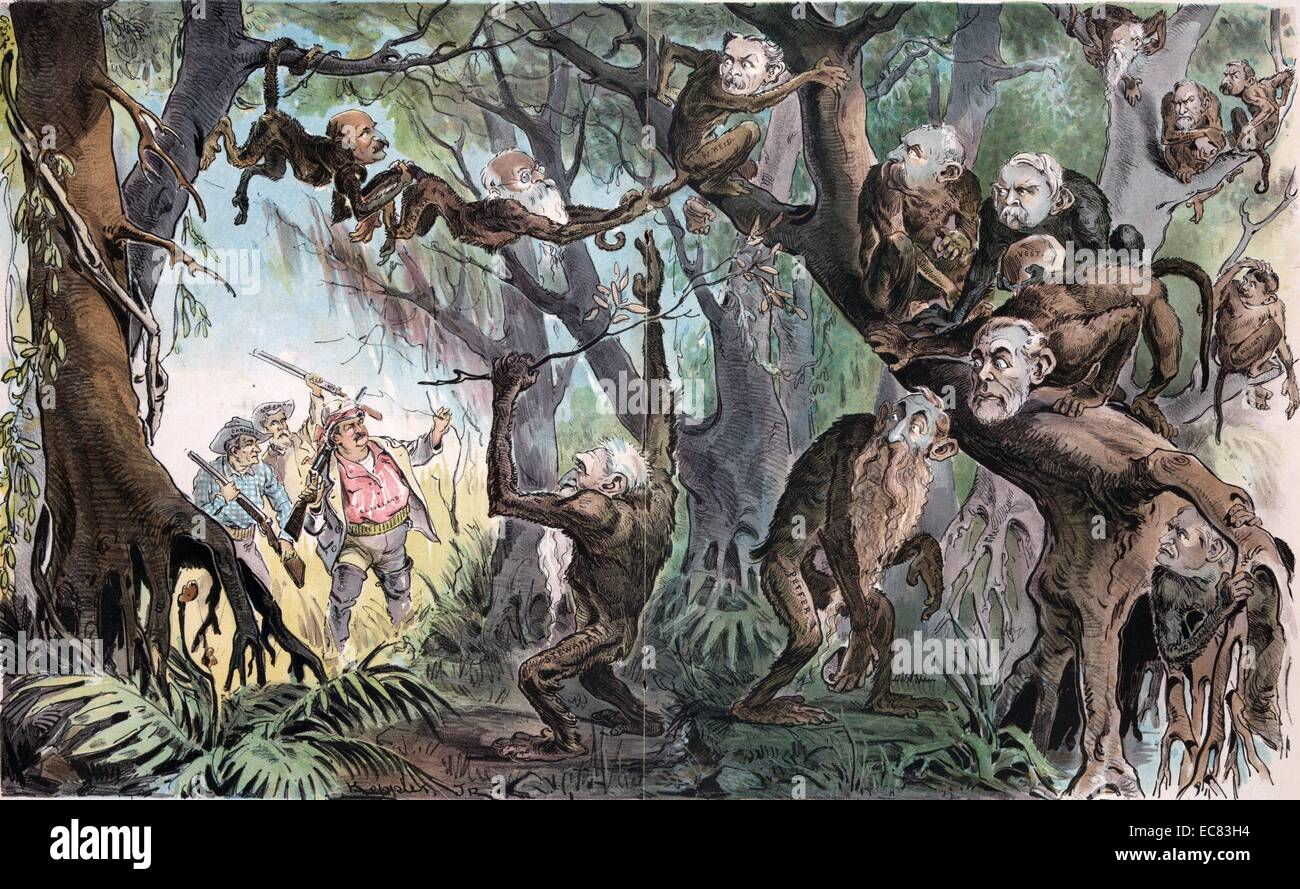 Through the jungle by Udo Keppler, 1872-1956, artist. Published 1893.shows President Cleveland as an explorer - Stock Image
