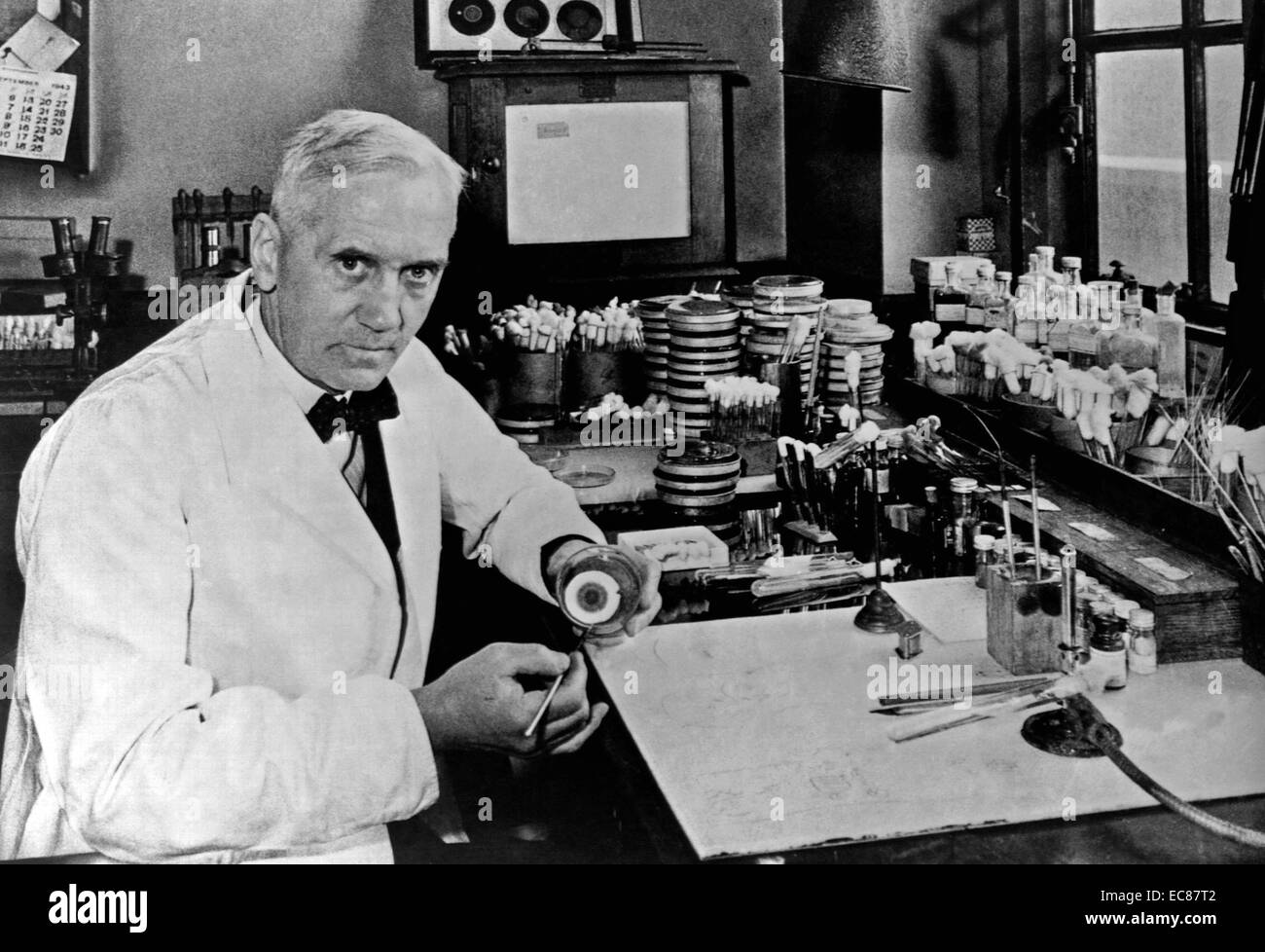 Sir Alexander Fleming, (6 August 1881 – 11 March 1955) was a Scottish biologist - Stock Image