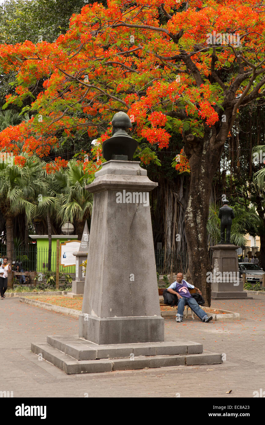 Mauritius, Port Louis, Company Garden, flame tree over Brown Sequard bust, professor of physiology - Stock Image