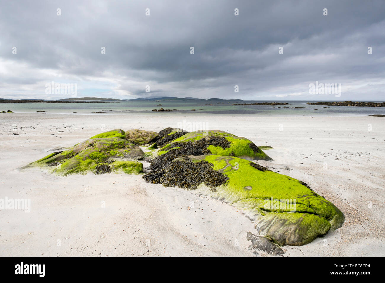 Seaweed covered rocks on empty sandy beach at Pol a Chara, South Uist, Outer Hebrides, Western Isles, Scotland, - Stock Image