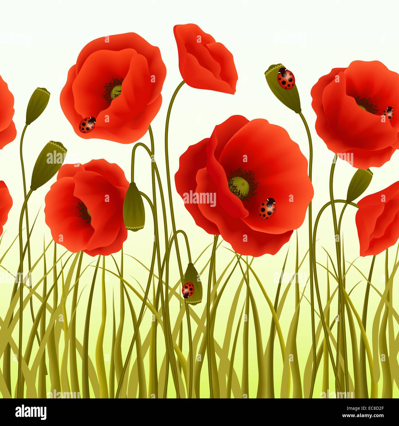 Red romantic poppy flowers and grass with ladybugs wallpaper vector red romantic poppy flowers and grass with ladybugs wallpaper vector illustration mightylinksfo