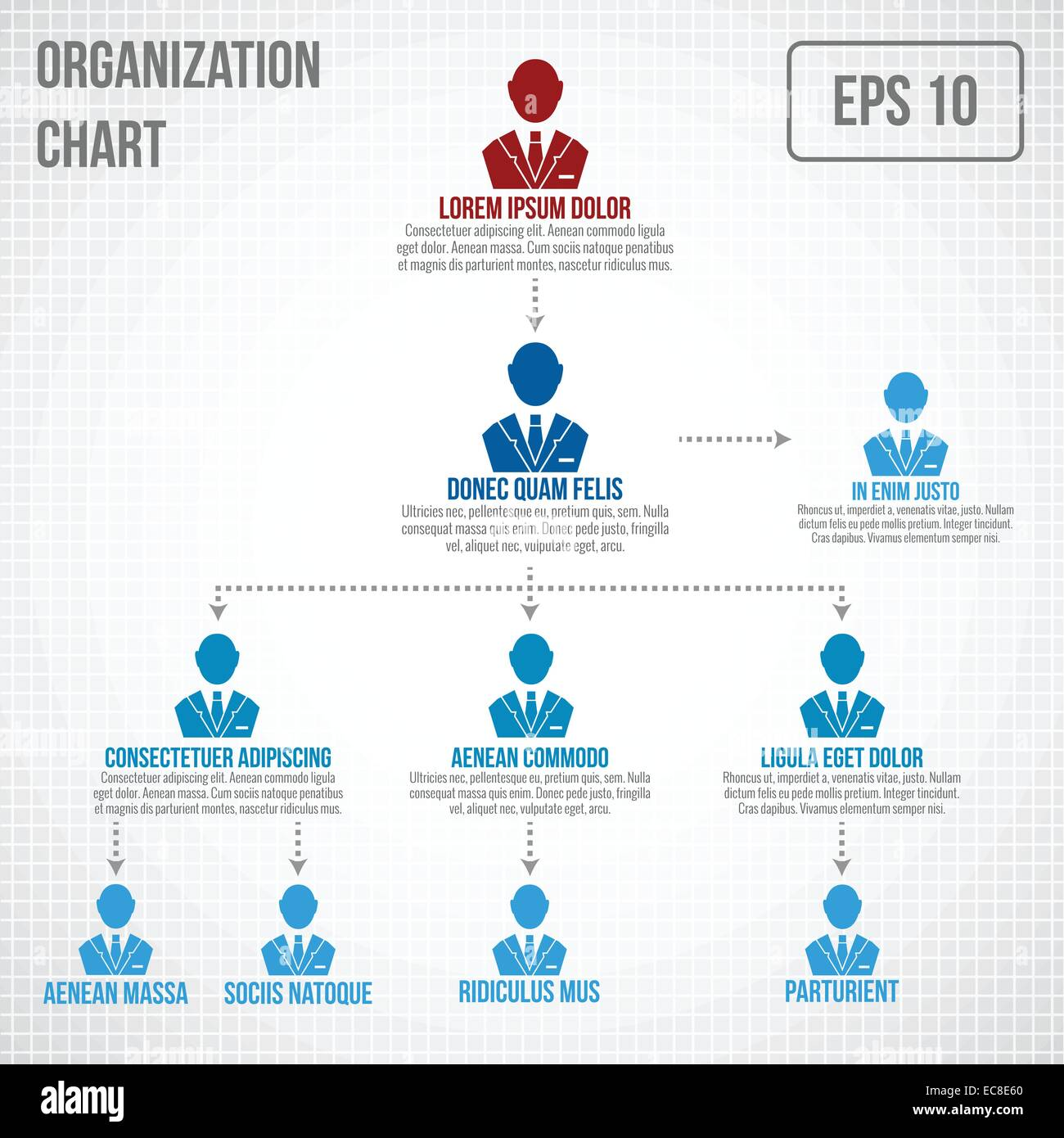 Organizational chart infographic business hierarchy boss to employee organizational chart infographic business hierarchy boss to employee structure vector illustration ccuart Image collections