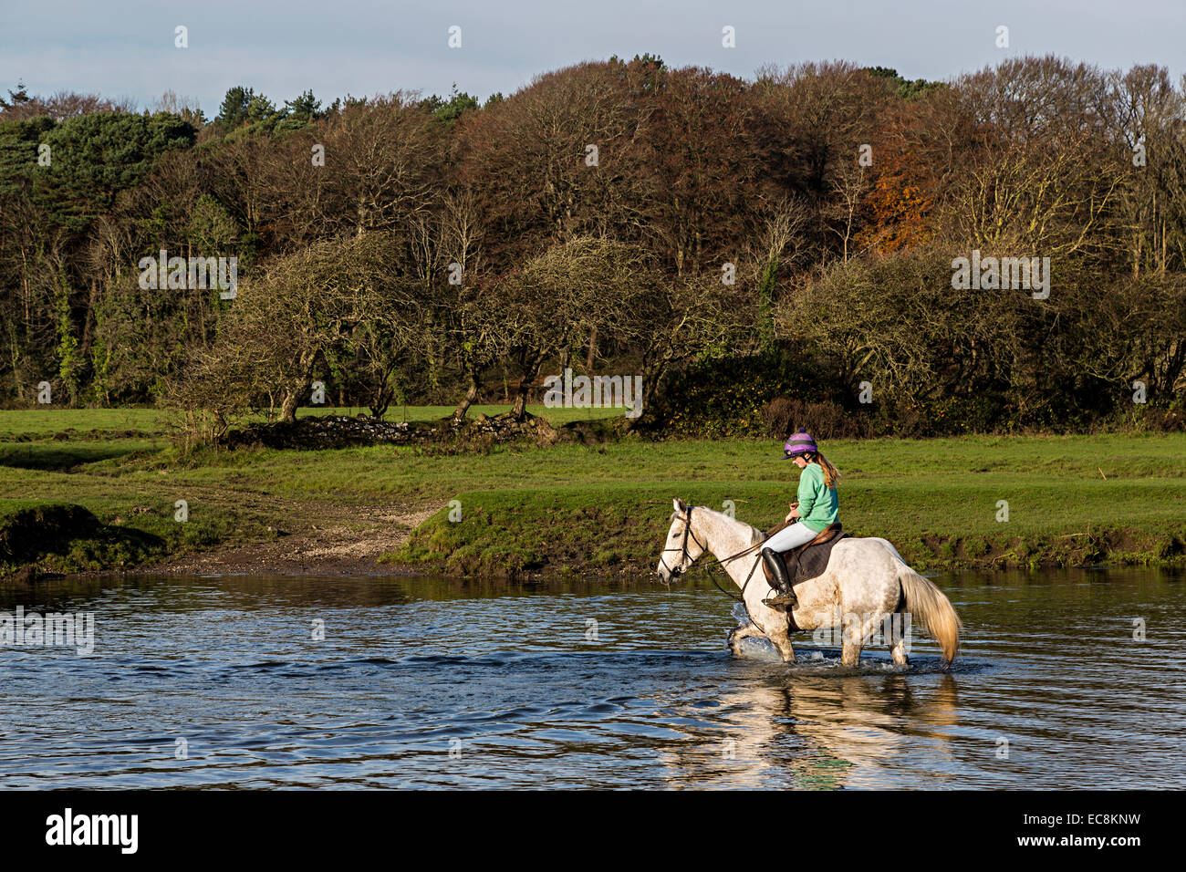 Girl on horse fording river, Ogmore, Wales, UK - Stock Image