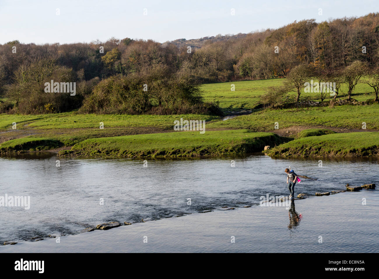 Boy crossing river on stepping stones, Ogmore, Wales, UK - Stock Image
