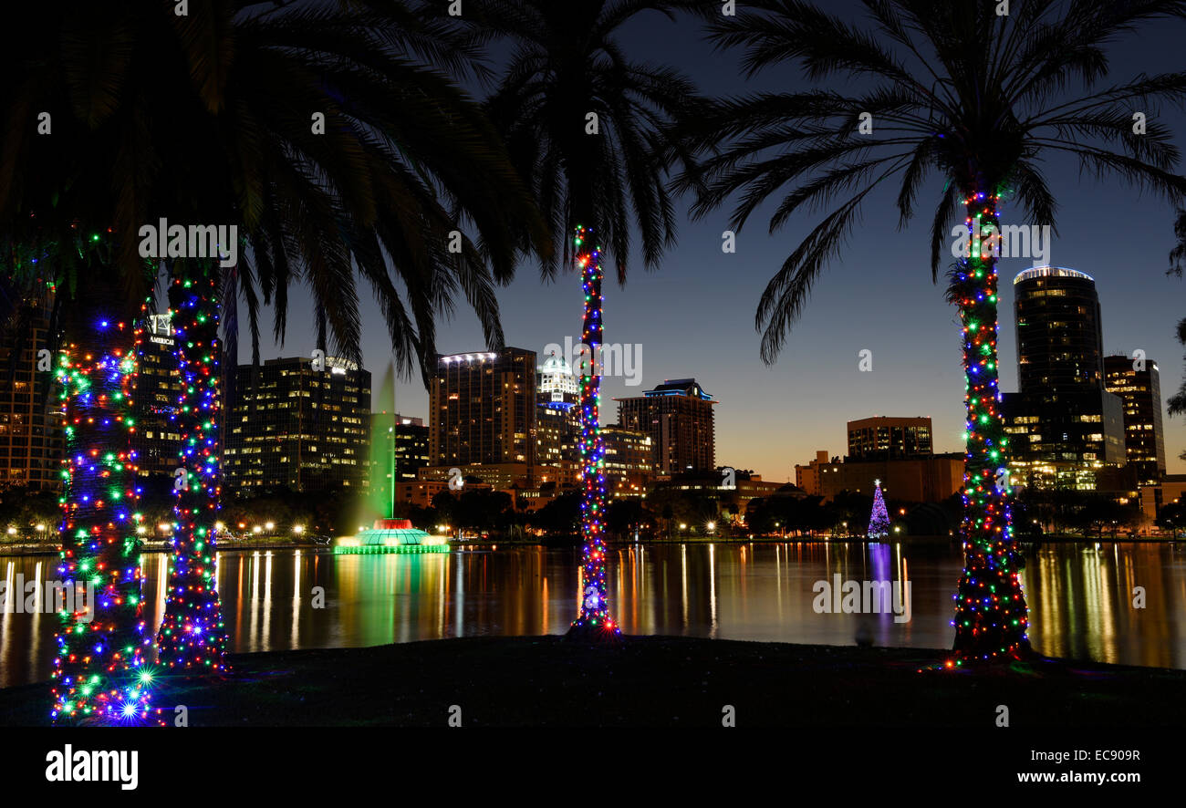orlando florida usa 10th dec 2014 palm trees are decorated with