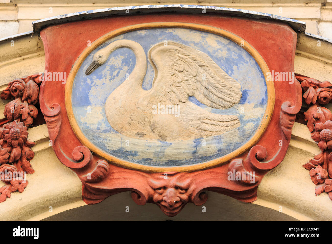 White swan, Prague, Czech Republic - Stock Image