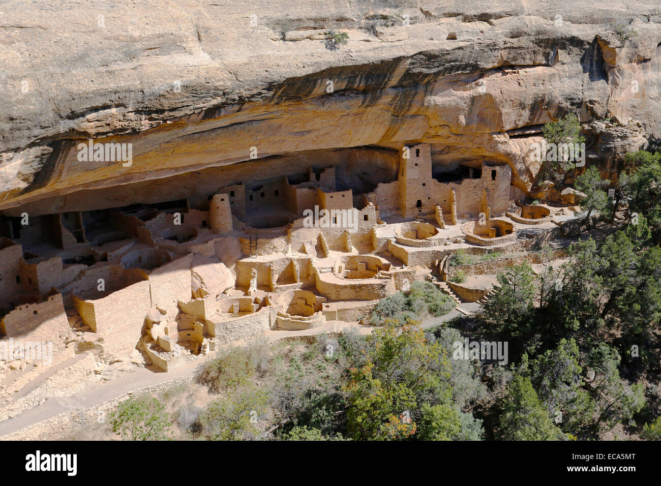 Cliff Palace, cliff dwellings of the Anasazi, Mesa Verde National Park, Colorado, United States - Stock Image