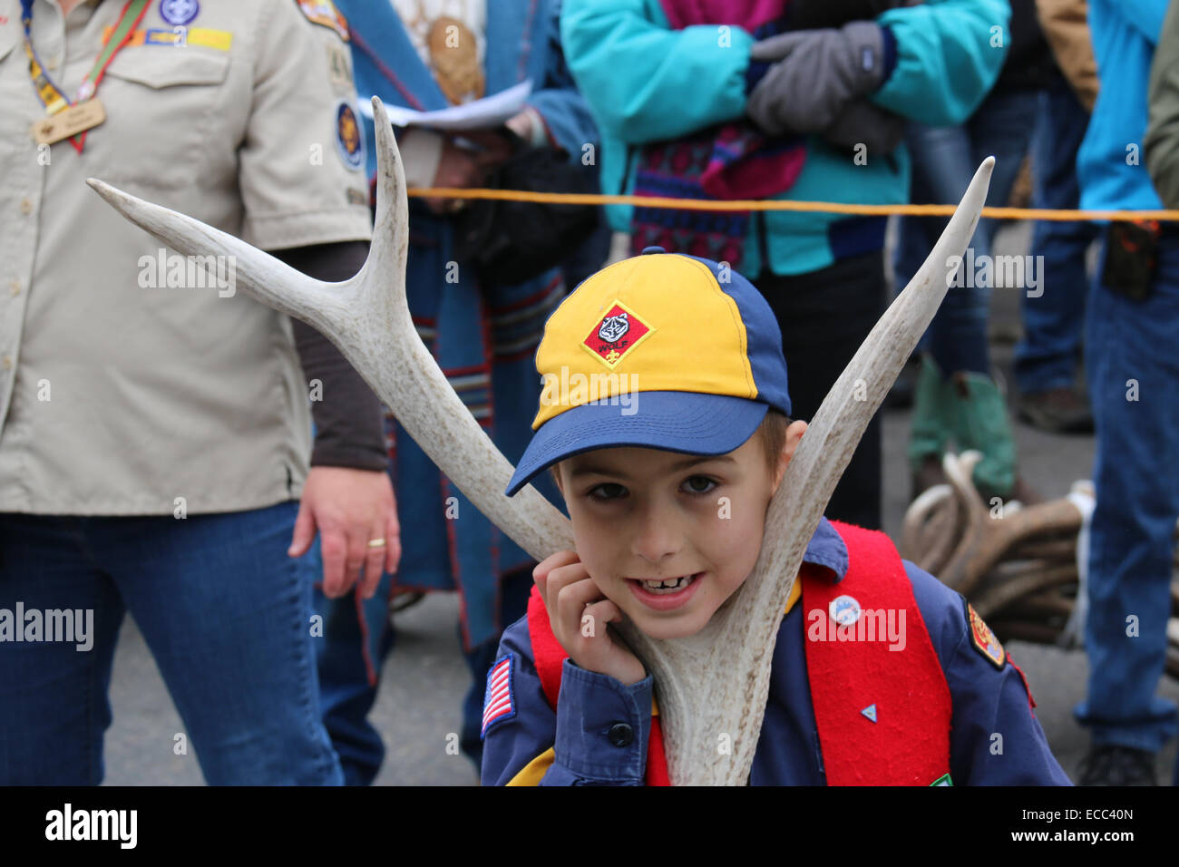 A Young Scout rests his head on the fork of an antler as he waits for his turn to take his auction lot up to the - Stock Image