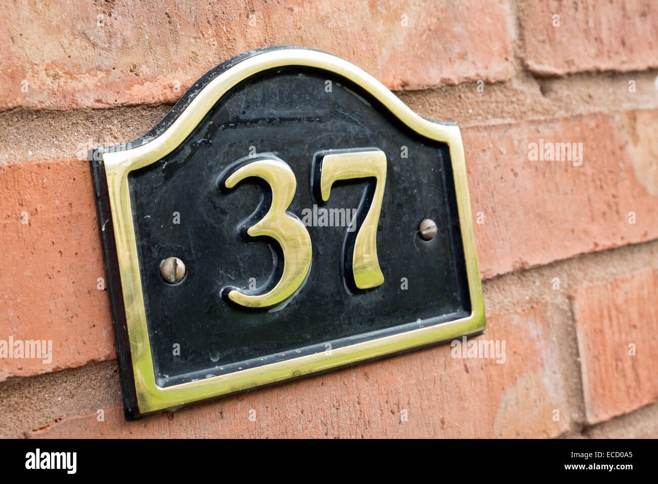 The number 37 on a brass plate affixed to the red brick wall of a home to signify it's address - Stock Image
