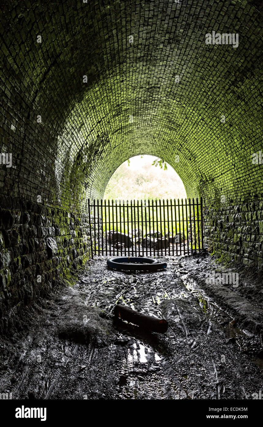 Disused railway tunnel, Clydach Gorge, Wales, UK - Stock Image