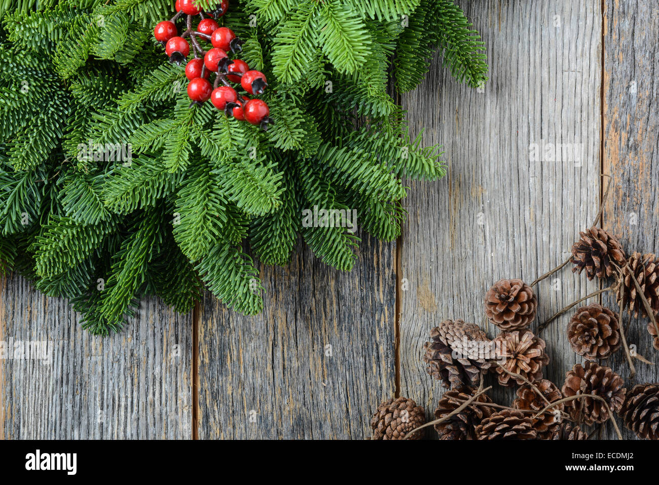 Tree Branch With Holly Berry And Pine Cones On Rustic