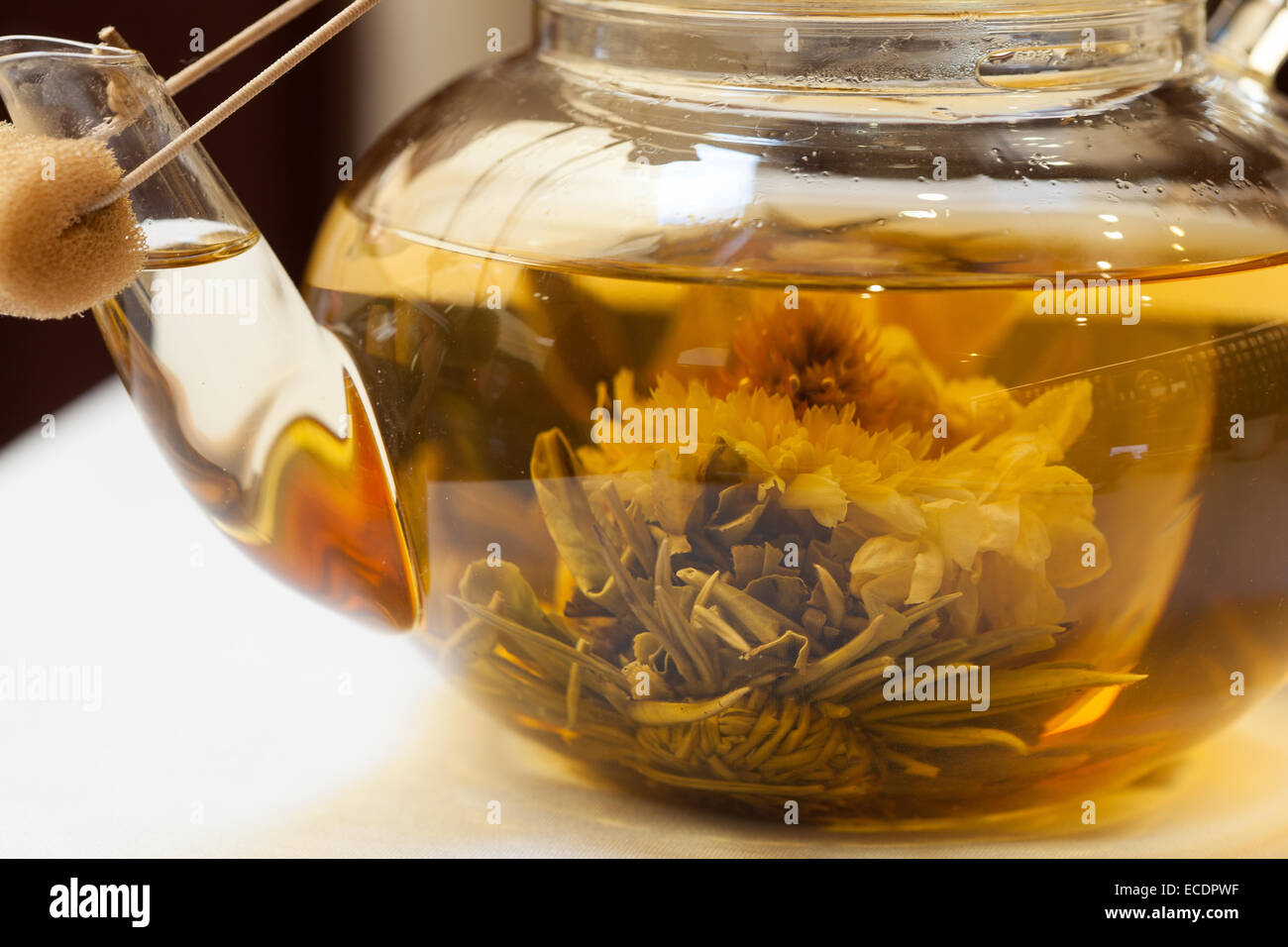 Close up of blossoming tea in glass tea pot - Stock Image