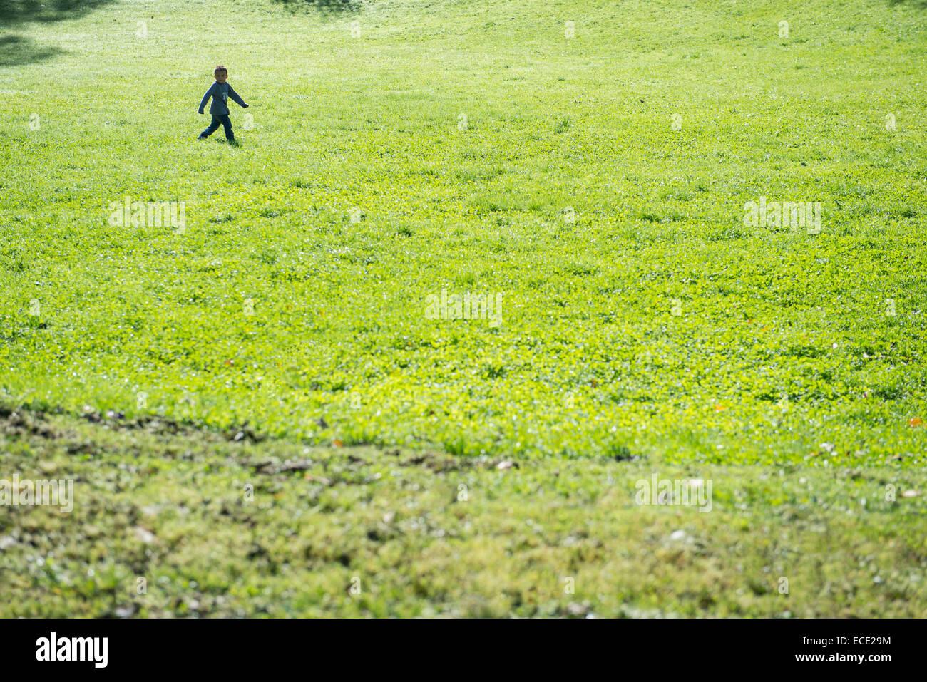 Small boy walking alone field meadow - Stock Image