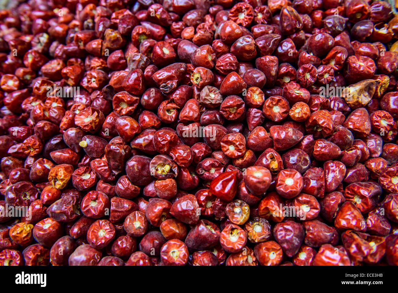 Chilis, Yemen - Stock Image
