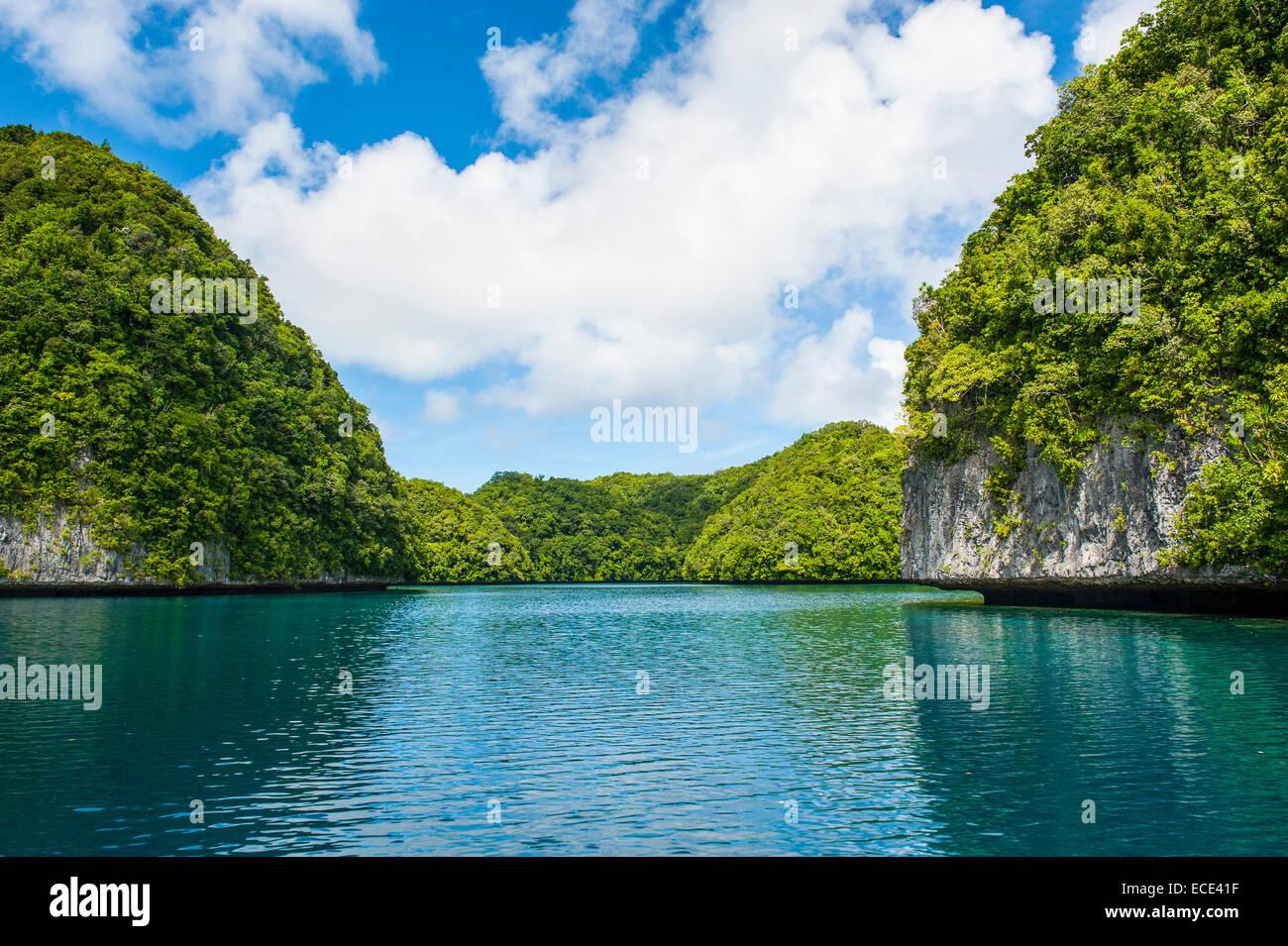 Islands, Rock Islands, Palau, Micronesia - Stock Image