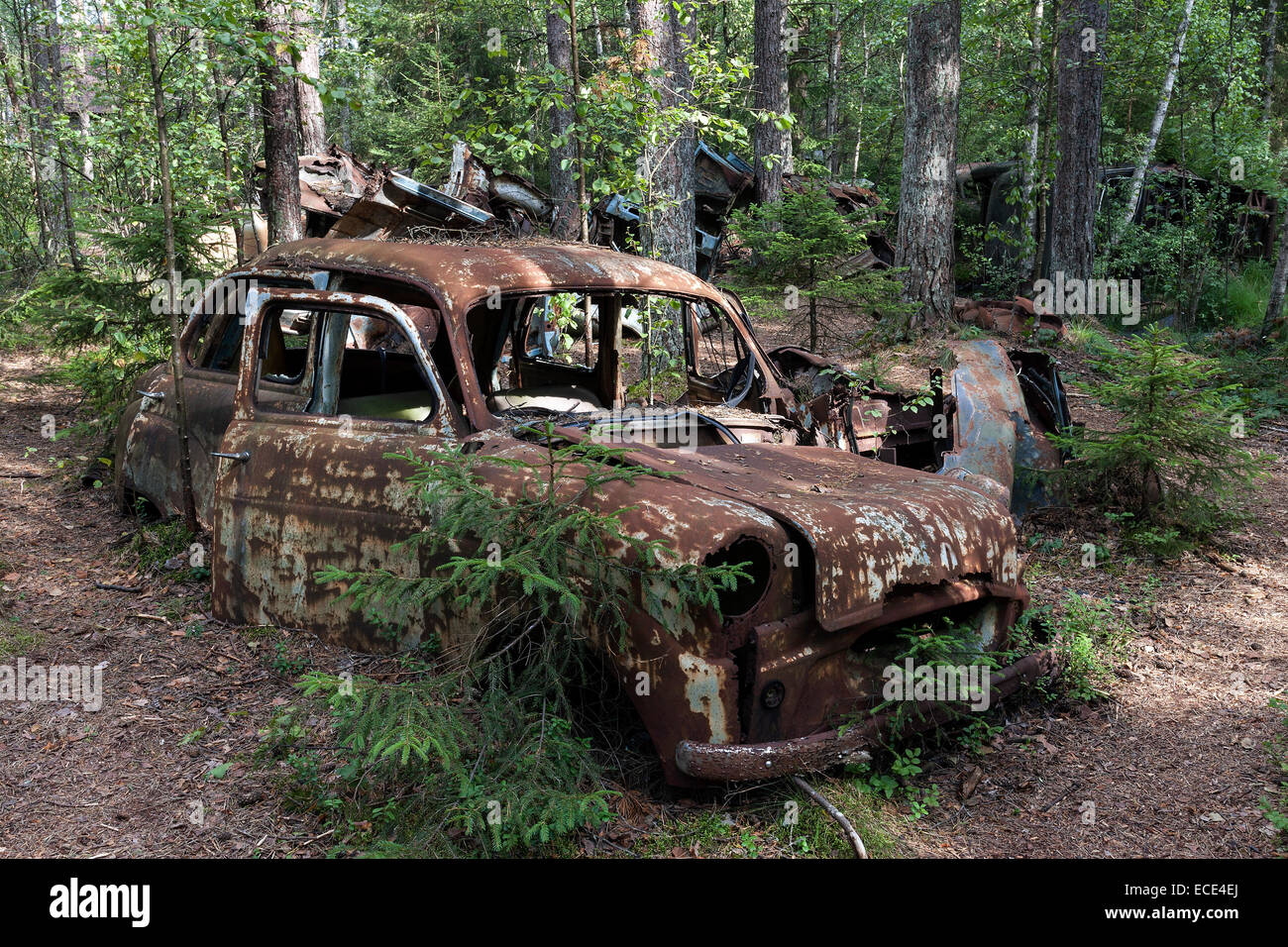 Auto graveyard in the forest, junk cars, Kyrkö Mosse, near Ryd Stock ...