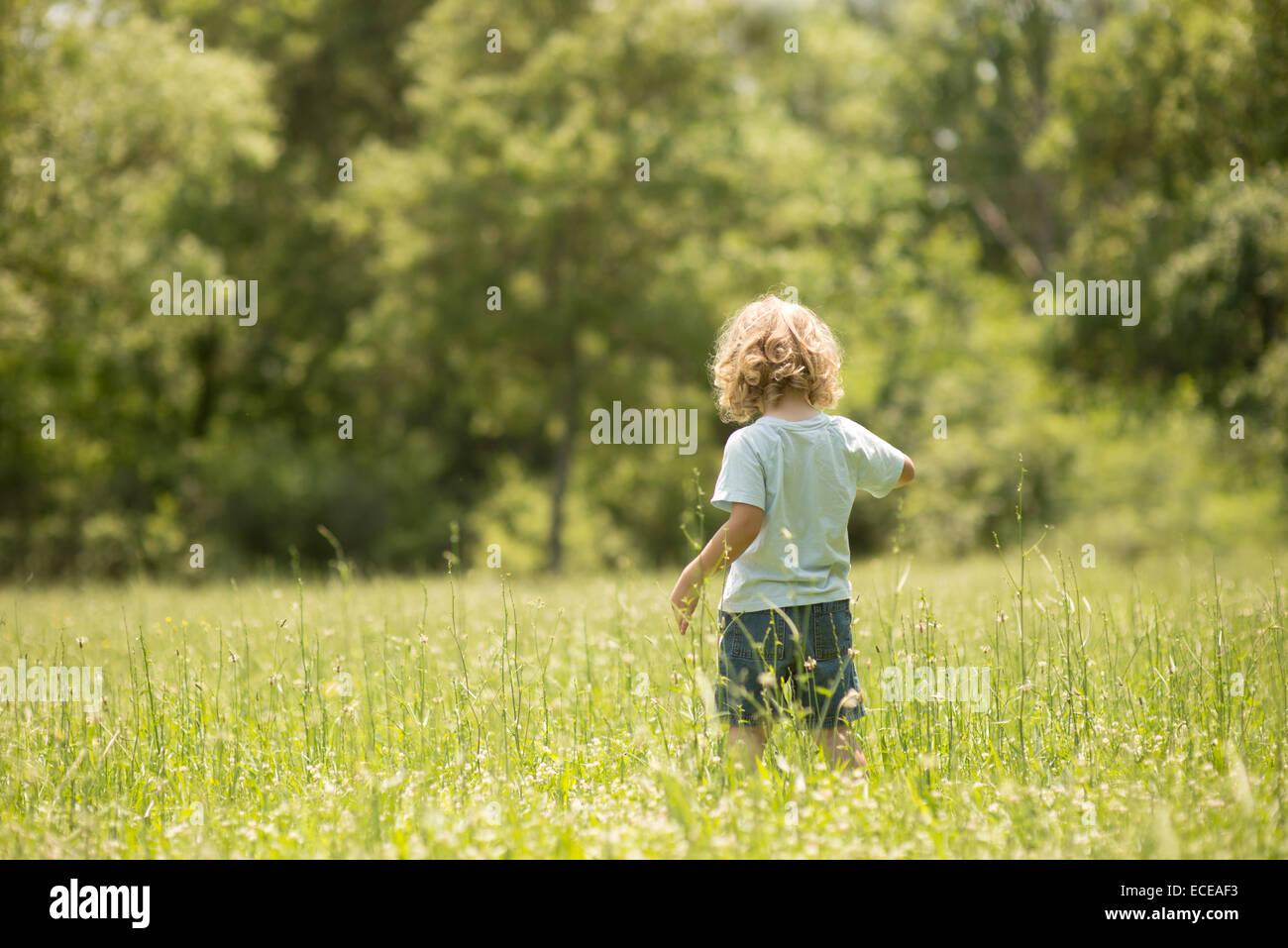 USA, South Carolina, Greenville County, Greenville, Boy (2-3) in green grass - Stock Image