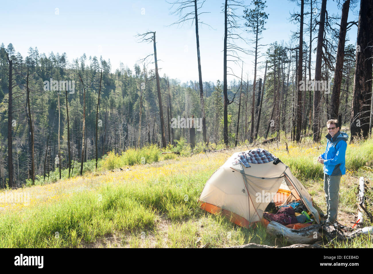 Man camping on Arizona trail, Grand Canyon, Arizona, America, USA - Stock Image
