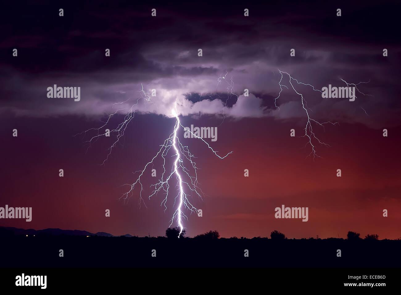 Lightning striking a tree, Arlington, Arizona, america, USA - Stock Image