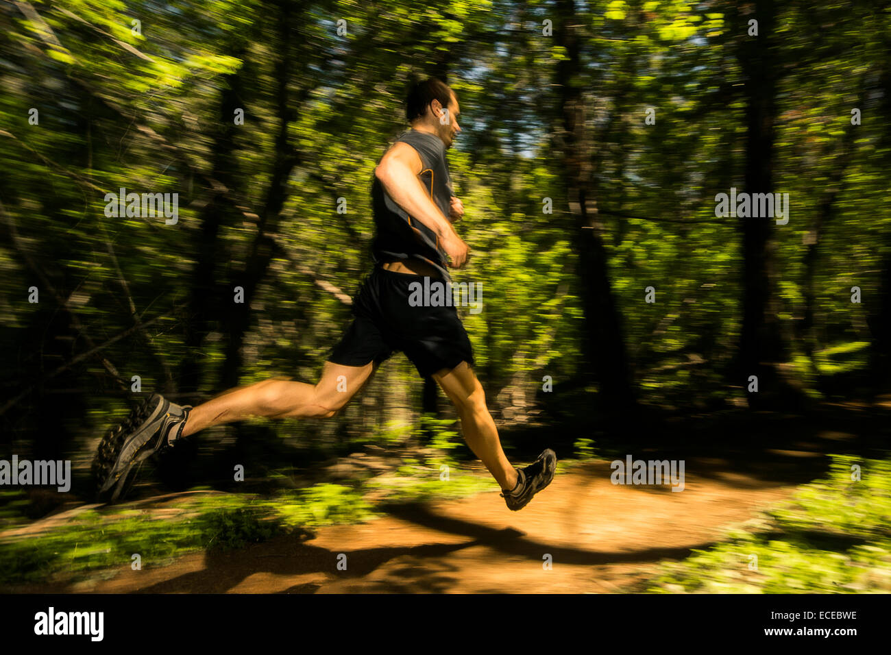 Athletic man running on trail through forest - Stock Image