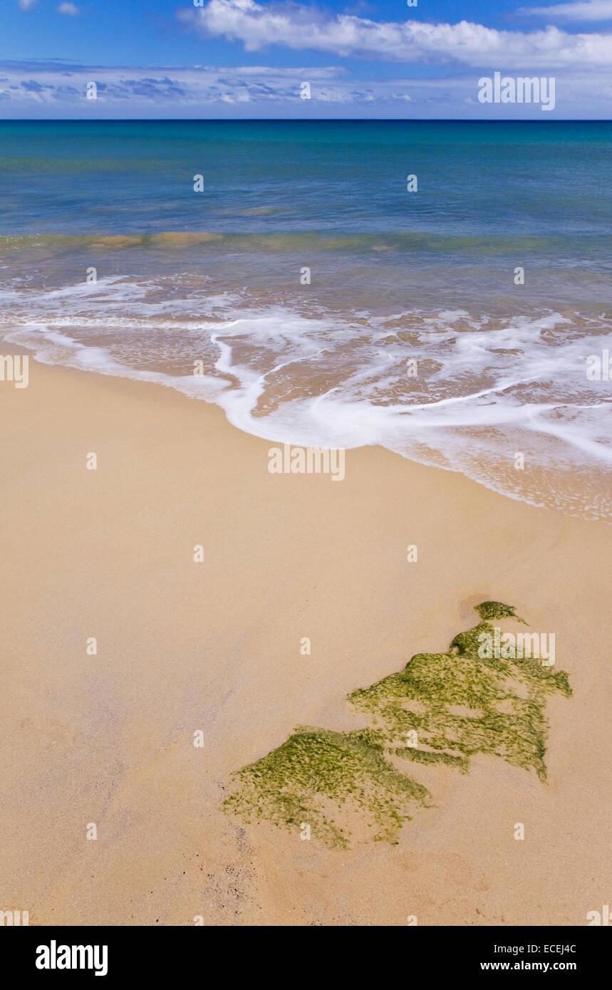 Sand on the beach in Porto Santo, Madeira island, Portugal - Stock Image