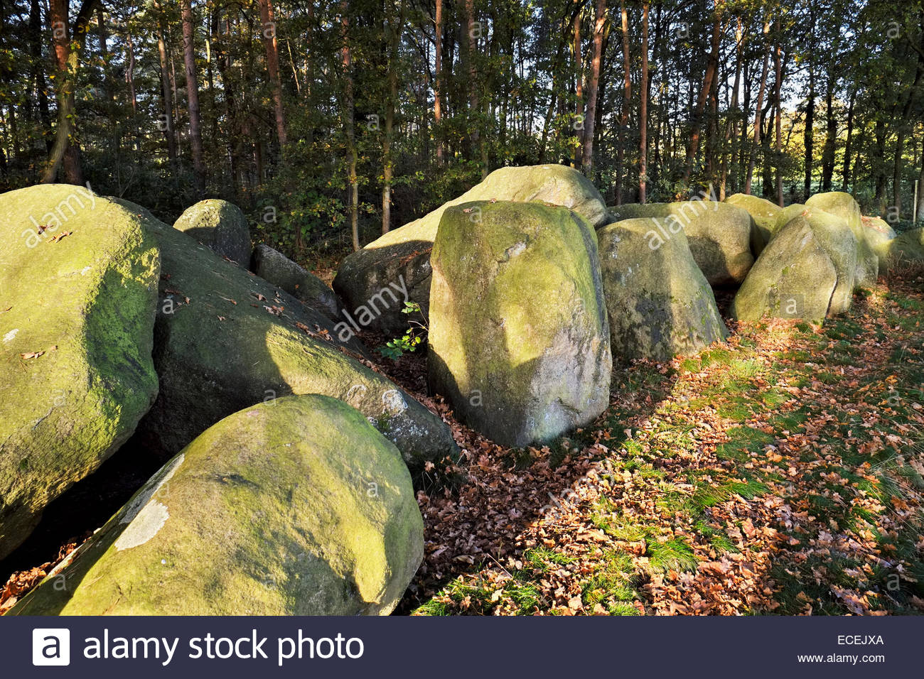 Megalith Kultur ancient grave stones in Lower Saxony, Germany - Stock Image