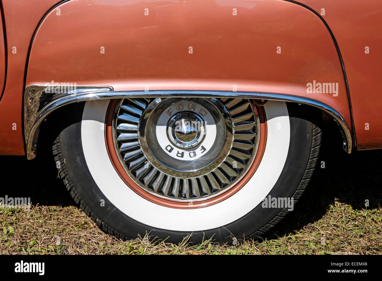 rear wheel arch cover on a 1957 ford thunderbird on display at a