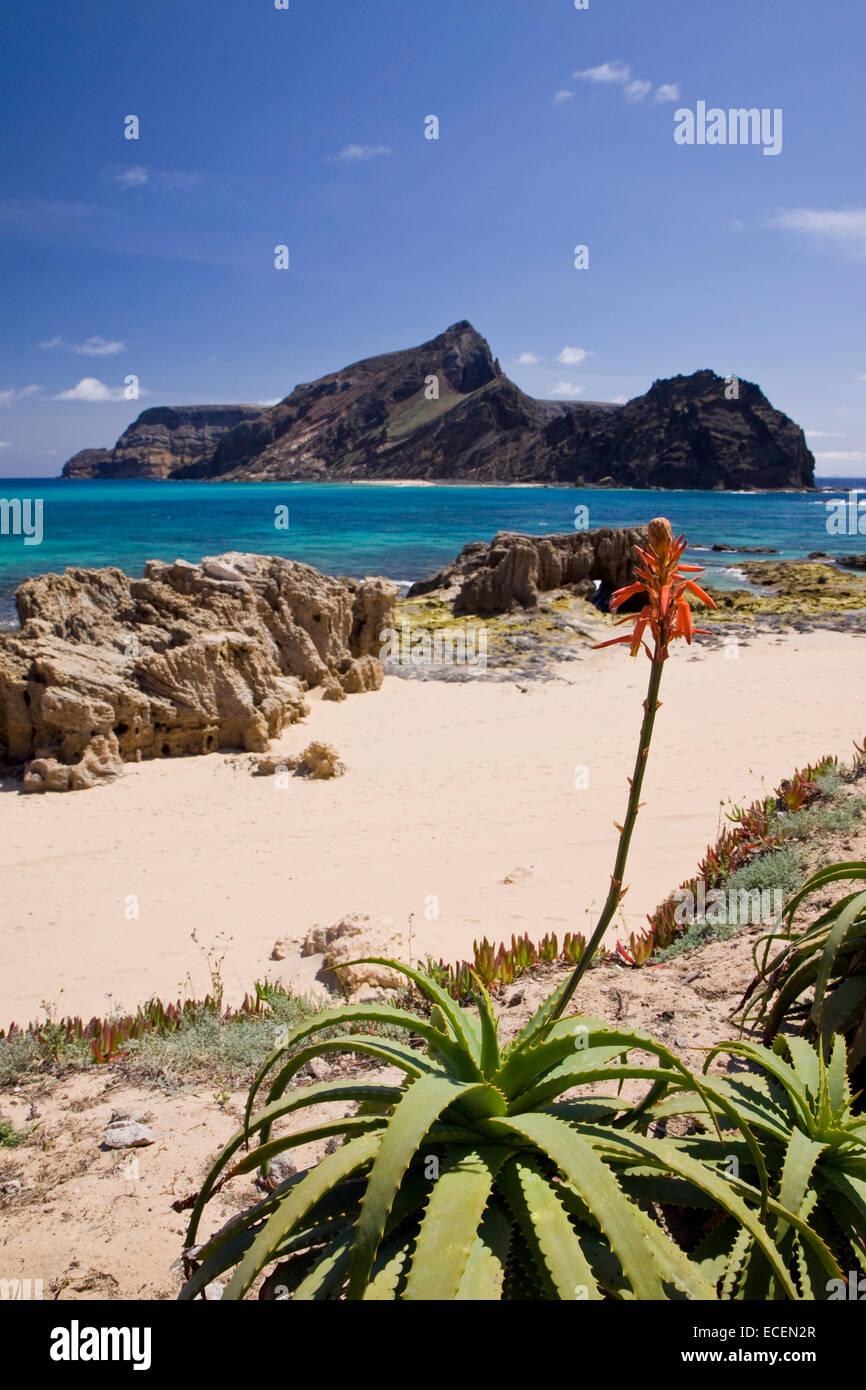 Ilheu da Cal island, Porto Santo, Madeira Islands, Portugal - Stock Image