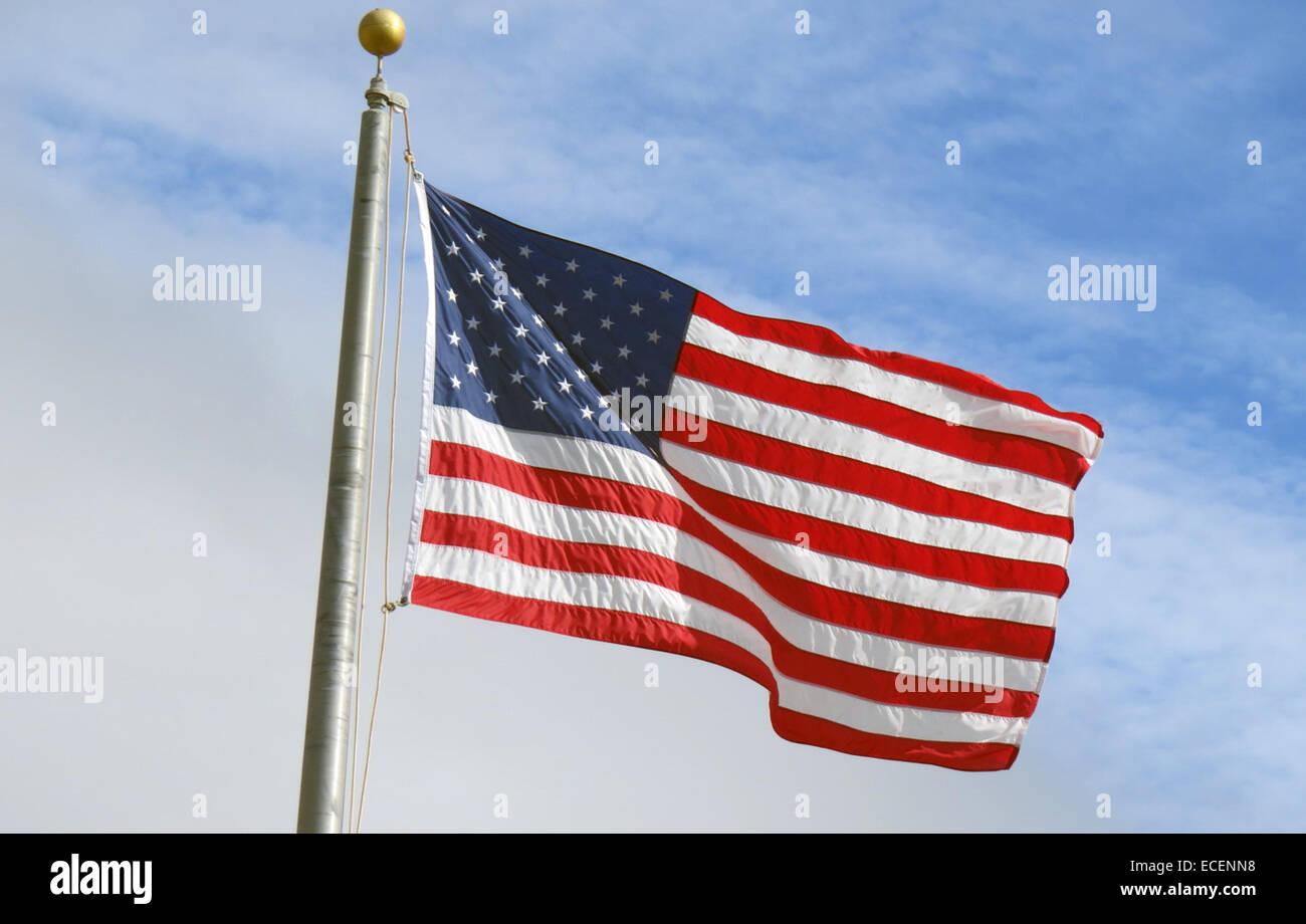 FLAG OF UNITED STATES OF AMERICA Photo Tony Gale - Stock Image