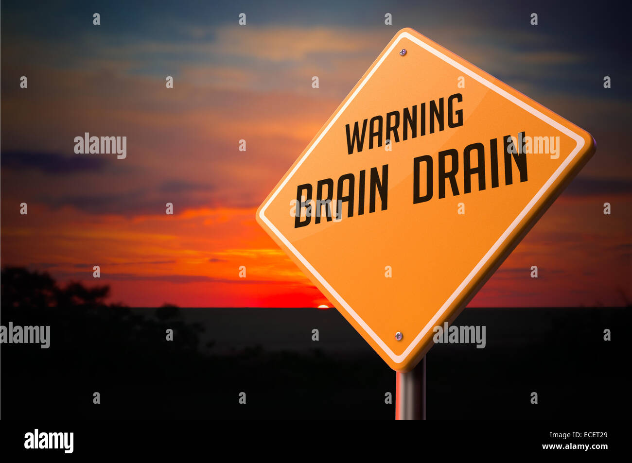 Brain Drain on Warning Road Sign. - Stock Image