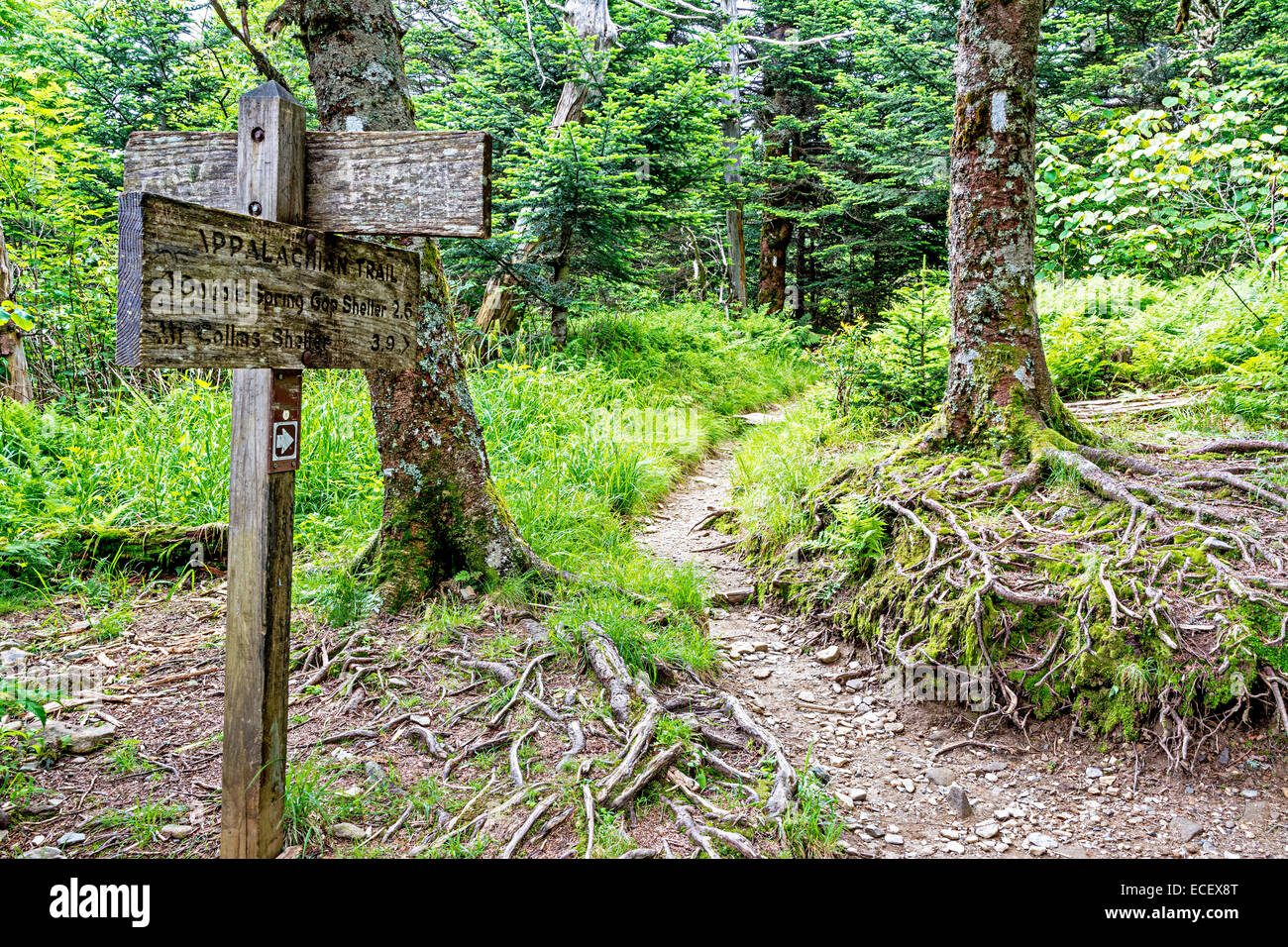 Appalachian trail and sign - Stock Image