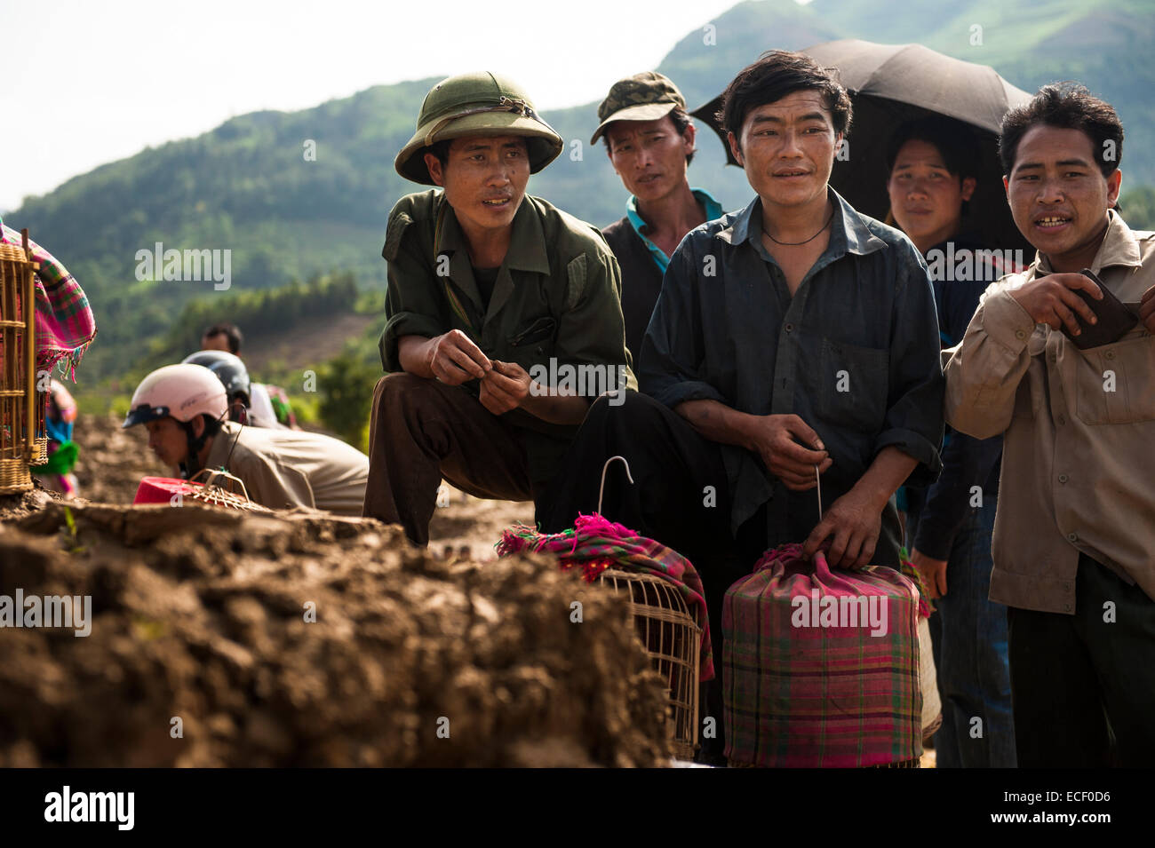 Hmong men observing song birds for sale at the Bac Ha Market - Stock Image