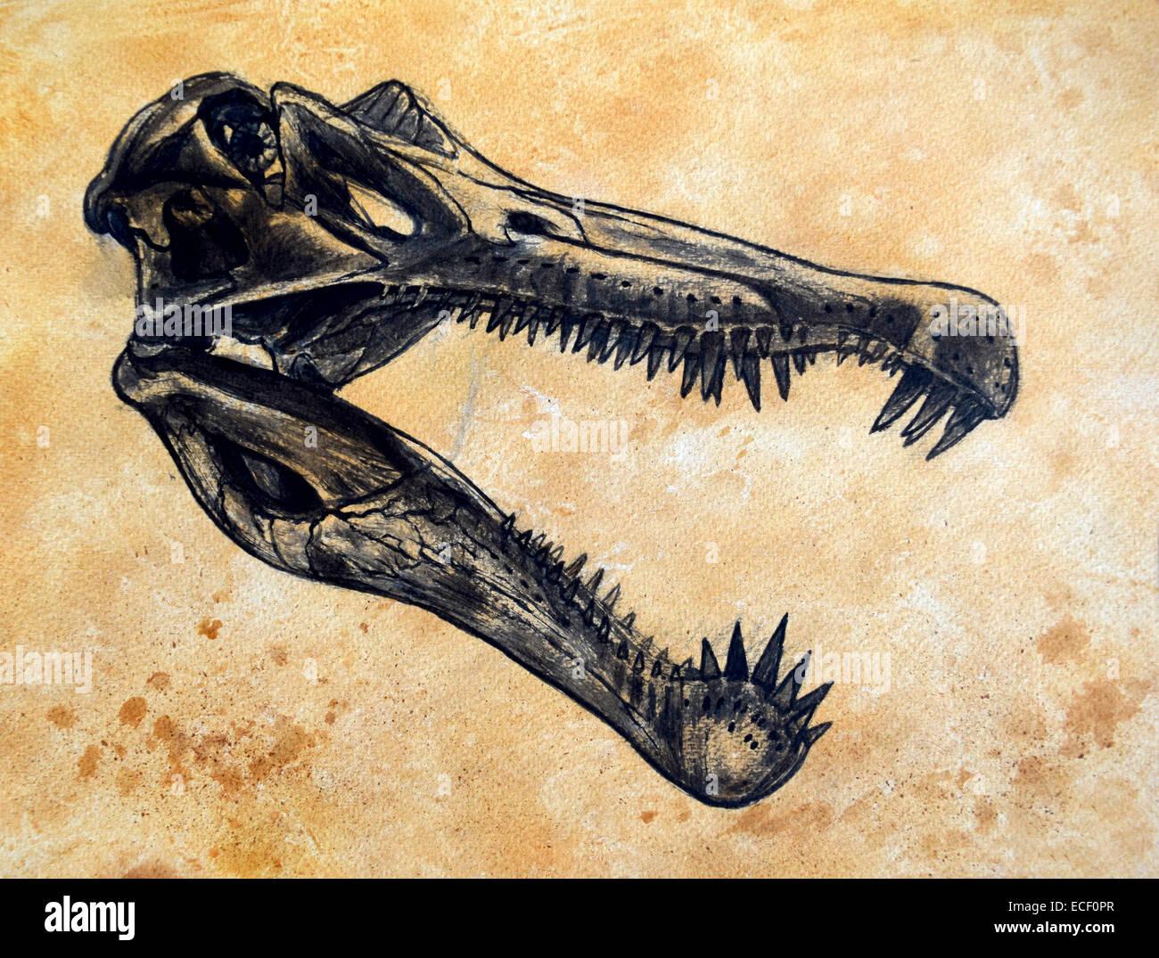 Spinosaurus dinosaur skull on textured background. - Stock Image