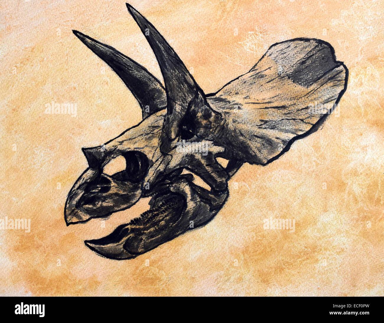 Triceratops dinosaur skull on textured background. - Stock Image