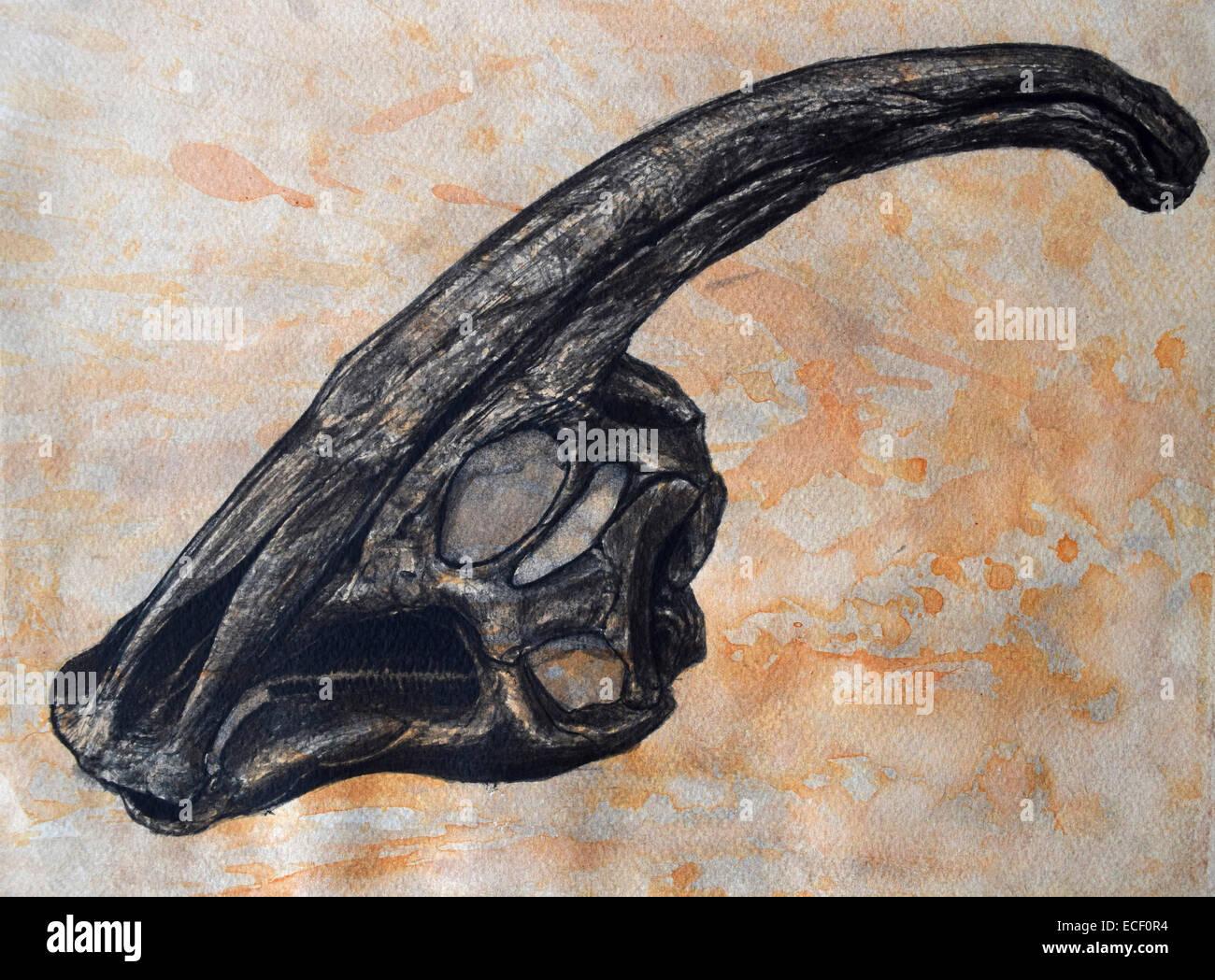 Parasaurolophus walkerii dinosaur skull on textured background. - Stock Image
