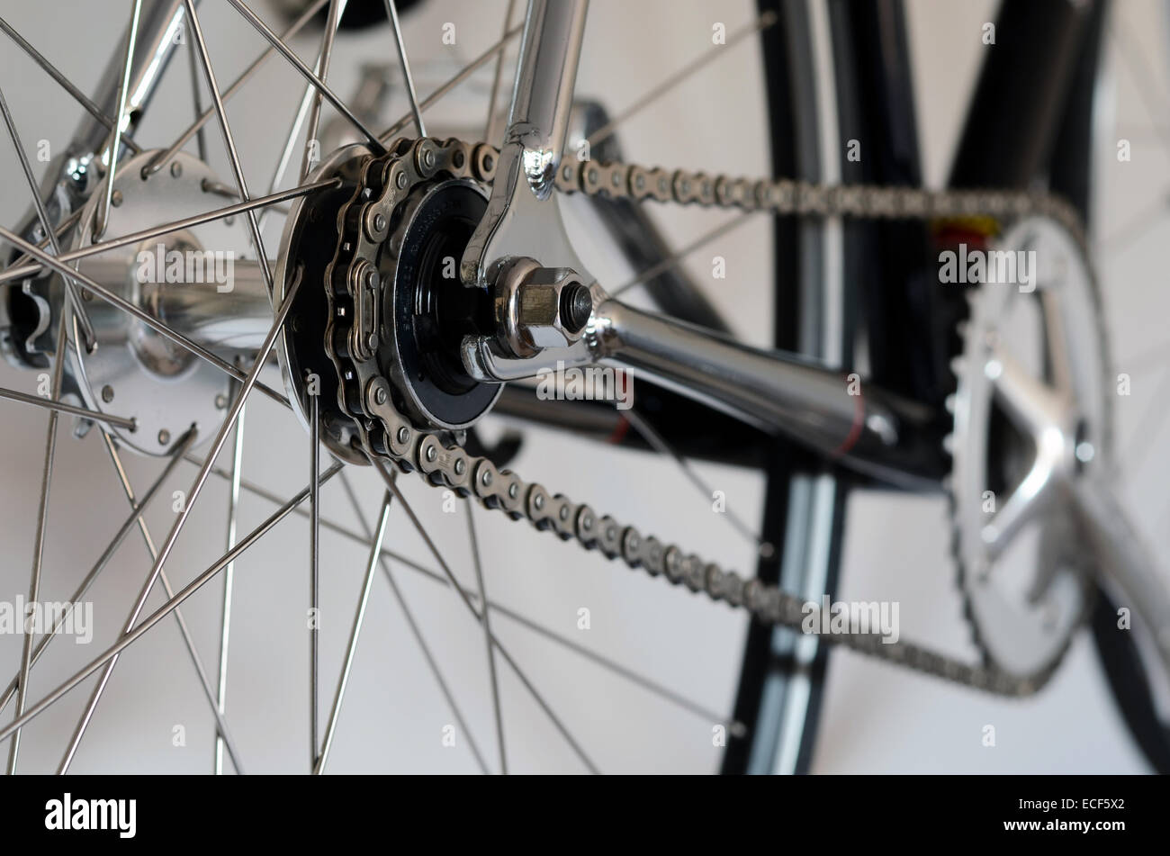Bike cassette on the wheel with chain - Stock Image