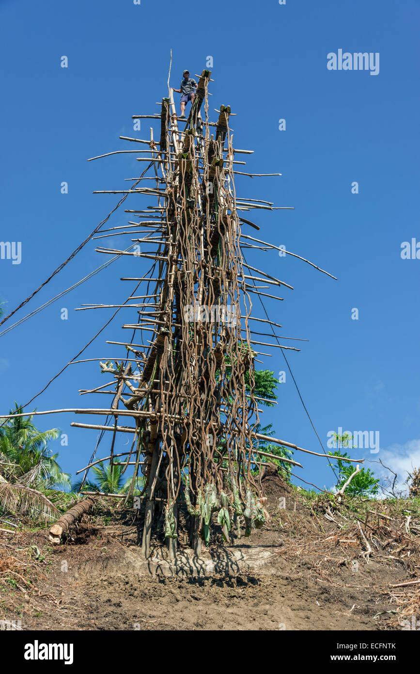 Land diving tower before the first divers begin, Pentecost Island, Vanuatu - Stock Image