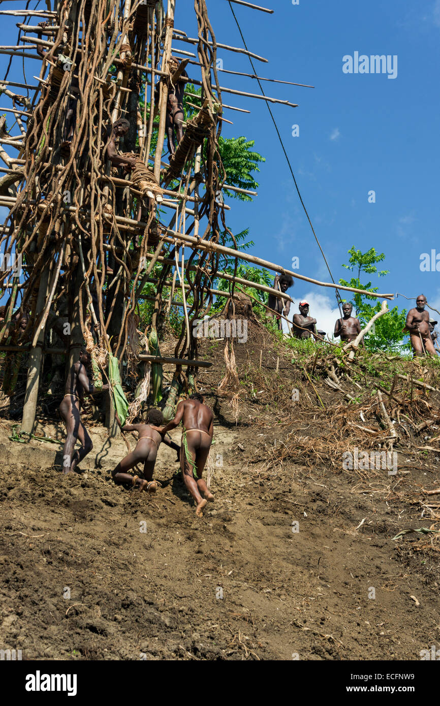 Young boy on his first land dive #11, Pentecost Island, Vanuatu - Stock Image