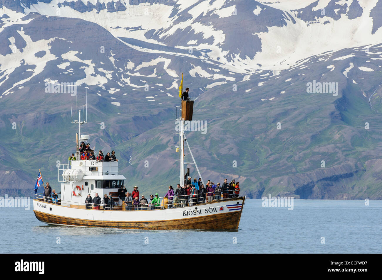 Commercial whale-watching boat, Skjálfandi Bay, Iceland. July 2012 - Stock Image