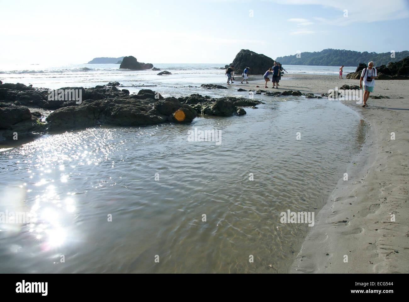 Manuel Antonio National Park, (Parque Nacional Manuel Antonio), Costa Rica Tourist explores the shore Stock Photo