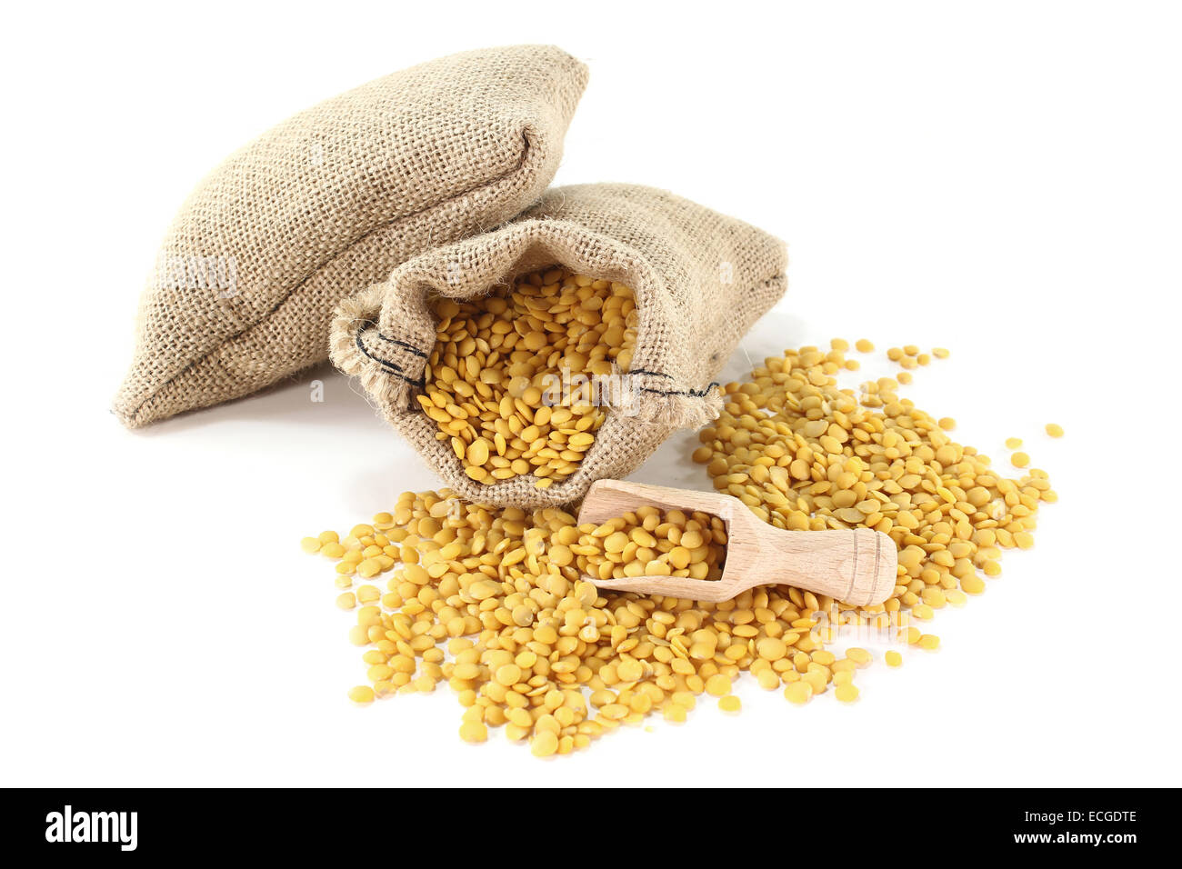 dried yellow lentils in sacks with bushels on a light background - Stock Image